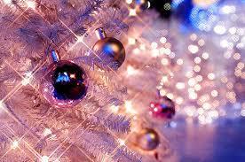 beleza christmas christmas lights christmas tree frost image