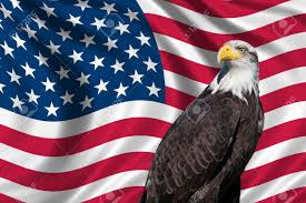 Picture Of The Us Flag Patriotic Symbol Showing The American Flag With A Bald Eagle Stock