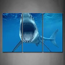shark wall decor amazon com