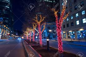 decorative lights around the trees in the middle of