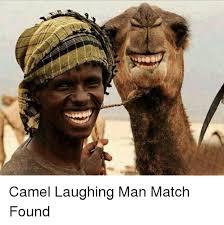 Laughing Man Meme - camel laughing man match found funny meme on me me