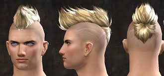 new hairstyles gw2 2015 gw2 human hairstyles prices of remy hair