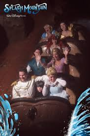 the 25 greatest pictures ever taken on splash mountain dorkly post