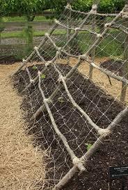 Diy Garden Trellis Ideas 2141 Best Gardening Images On Pinterest Gardening Plants And