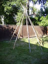 Backyard Teepee Plant These Annual Vines To Make A Garden Tipi