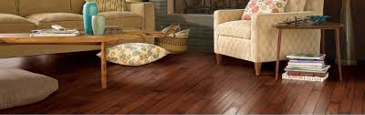 Steam Cleaning U0026 Floor Care Services Fort Collins Co Floor To Ceiling Greeley