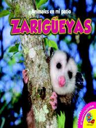 Possum In My Backyard Animales En Mi Patio Animals In My Backyard Series Overdrive