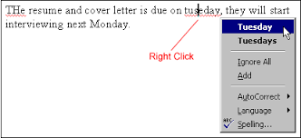 How To Spell Resume Word 2000 Spell And Grammar Check Page 3