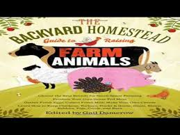 Backyard Cattle Raising The Backyard Homestead Guide To Raising Farm Animals Choose The