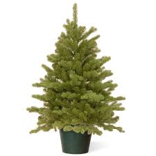 3ft hton spruce potted feel real artificial tree