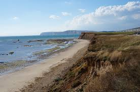 should i move to the isle of wight advice on job opportunities