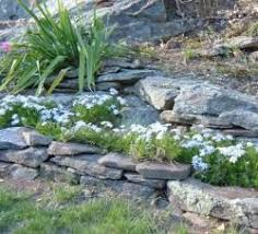 designing a rock garden landscaping with rocks and boulders