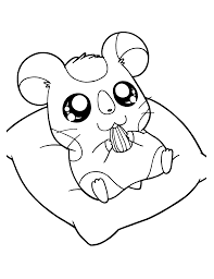 dexter having sun flower seed coloring page animal pages of