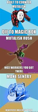 Starcraft 2 Meme - starcraft2 memes oc