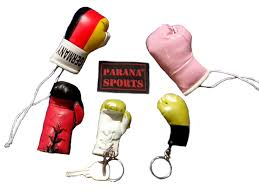 parana sports pvt ltd quality boxing and martial arts gloves