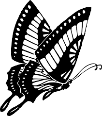 butterfly clipart black and white outline clipartxtras
