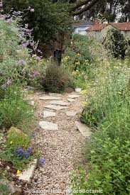 44 best california native landscaping images on pinterest native