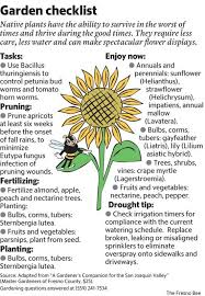 pruning native plants a guide to helping vegetable plants survive july heat the fresno bee