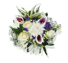 lidl launch budget friendly flowers in time for mother u0027s day