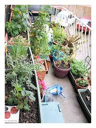 Herb Garden Layout Ideas I4 Vegetable Gardening Ideas On Apartment
