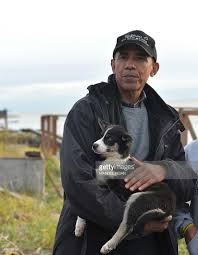 us president barack obama holds a puppy while visiting musher john