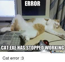 Working Cat Meme - error cat exe has stopped working memecentercom cat error 3 cats