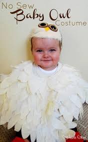 Owl Halloween Costume Adults Diy Halloween Costumes