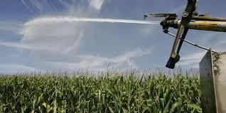 chambre agriculture charente irrigation la confédération paysanne de charente maritime accuse