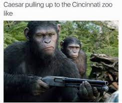 Planet Of The Apes Meme - ohhh shit harambe the gorilla know your meme