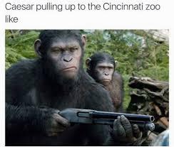 Ape Meme - ohhh shit harambe the gorilla know your meme