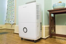 the best dehumidifier