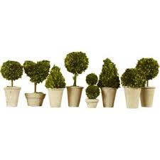 Topiary Plants Online - faux flowers u0026 plants sale joss u0026 main