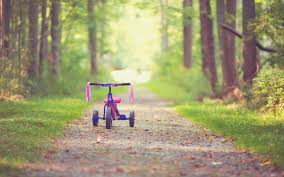 mood bike children s childhood pink tree tree leaves leaves path