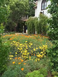 california native drought tolerant plants garden u2013 the greater wilshire neighborhood council