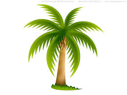 palm tree designs images tapas tropicales