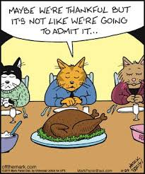 346 best thanksgiving humor images on thanksgiving