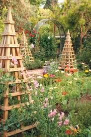 Support For Climbing Plants - garden guru life support prickett u0026 ellis estate agents