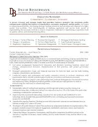 summary on a resume executive summary resume exle template