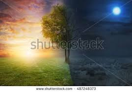Light And Day Amanda Carden U0027s Portfolio On Shutterstock