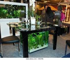 dining room table fish tank fish tank fish tank aquarium dining tables room ideas table