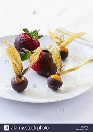 chocolate dipped fruit chocolate dipped fruit stock photo royalty free image 30684808