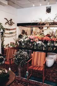 bloom room indoor plant care u2014 treasures u0026 travels