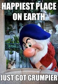 Disneyland Meme - grumpy cat goes to disneyland meme guy