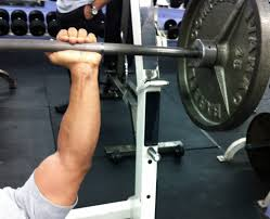 Life Fitness Bench Press Bar Weight Push Ups Or Bench Press For A Better Chest Greatist