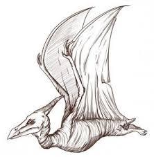 25 draw dinosaurs ideas dinosaur art