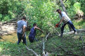 affordable tree service crossville tn county hopes to re open obed river park soon local news
