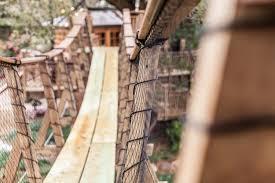 the treehouse that cane u0027s built u2013 dig baton rouge