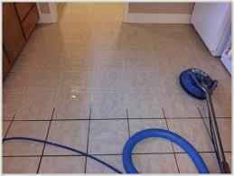 steam cleaner for bathroom tiles home design