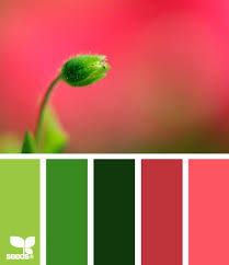 Color Design Palette Wedding Colors Coral Deep Green Light Green All We Need Is A