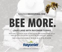 catch the buzz 2017 bee culture calendar photo contest closes